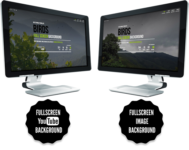 Birds || Responsive Coming Soon Page
